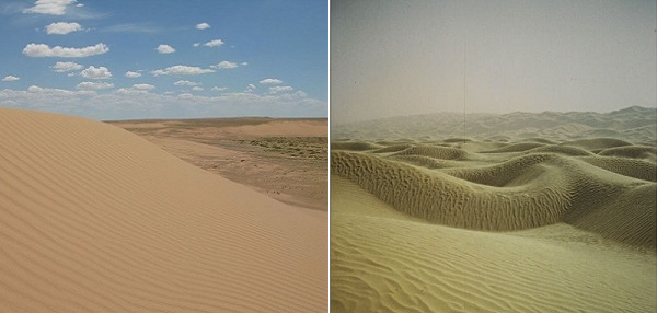 kousa_desert.png